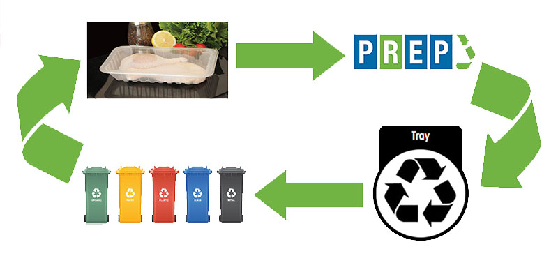 EcoFood__APCO_Circular_Economy PPG | Blogs About Packaging Supplies